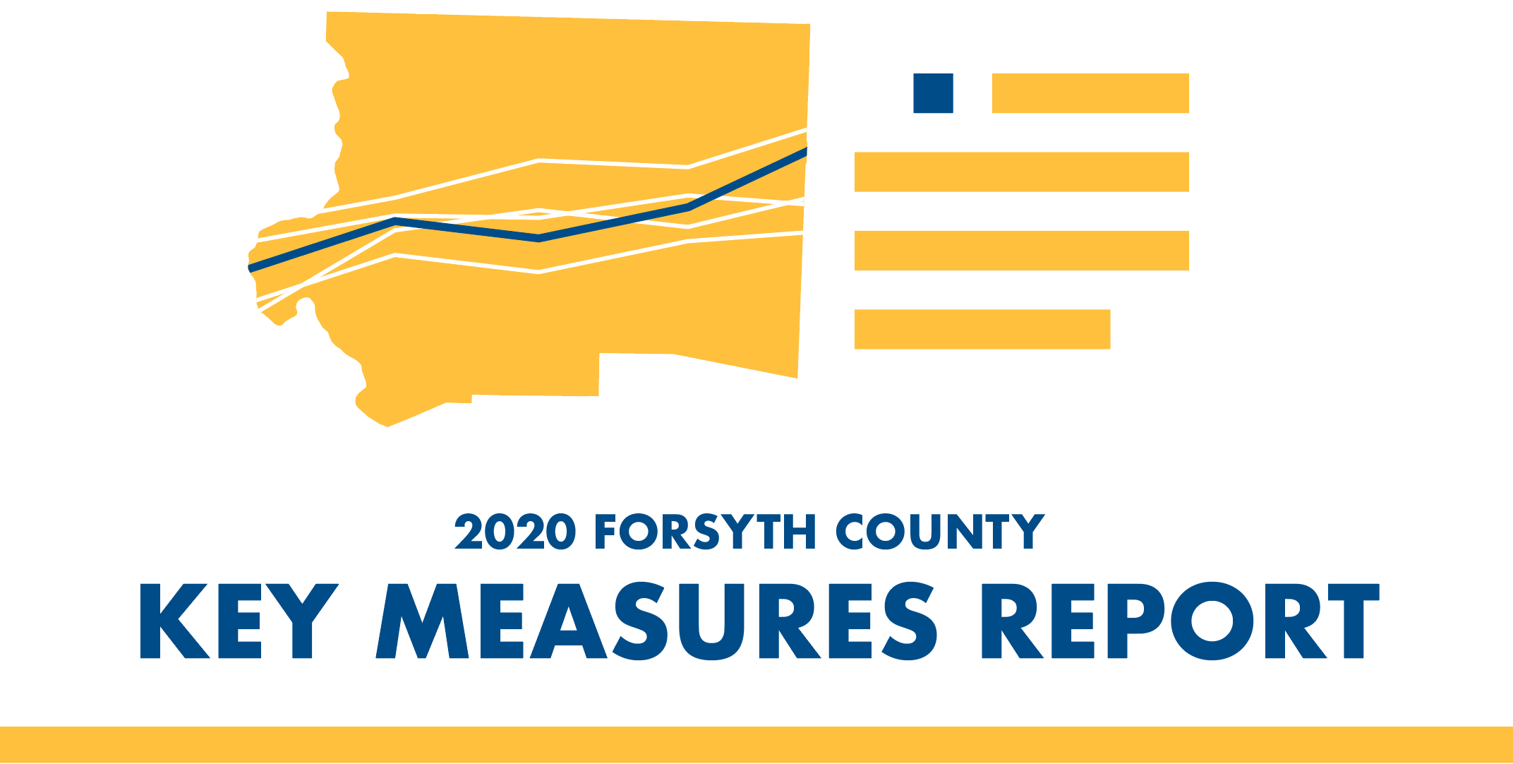 2020 Forsyth County Key Measures Report