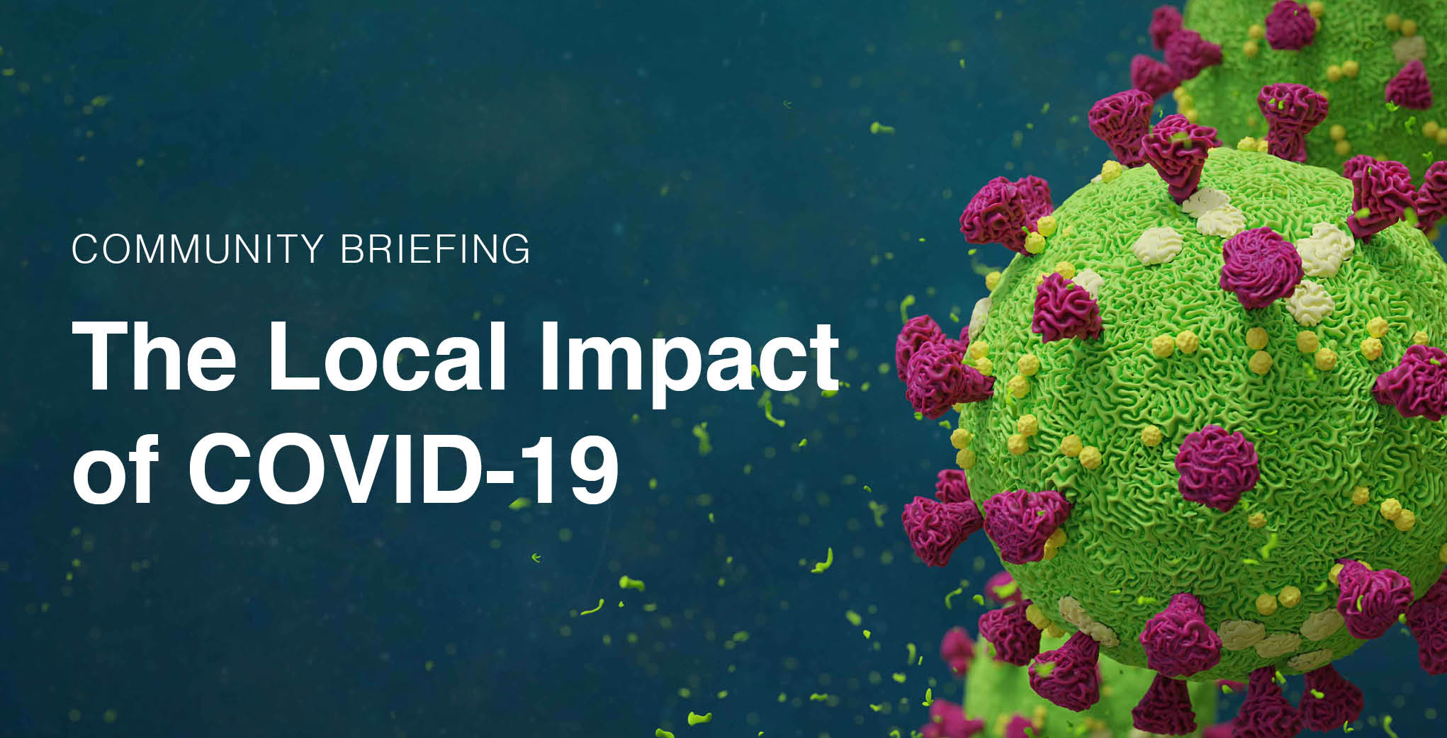 Community Briefing: The Local Impact of COVID-19